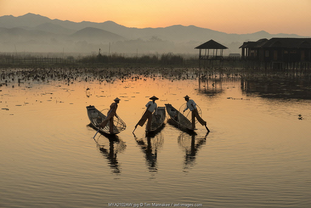 Intha fishermen row on Inle Lake, Shan State, Burma, Myanmar